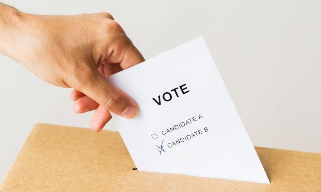 material electoral