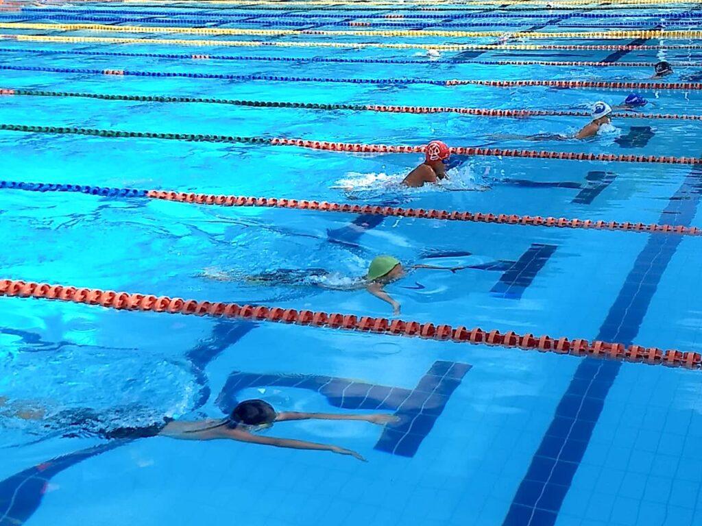 Primer circuito de natación virtual