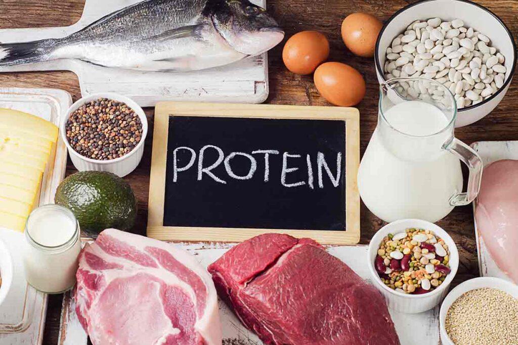 ¿Qué le sucede a tu cuerpo si no consumes suficientes proteínas?