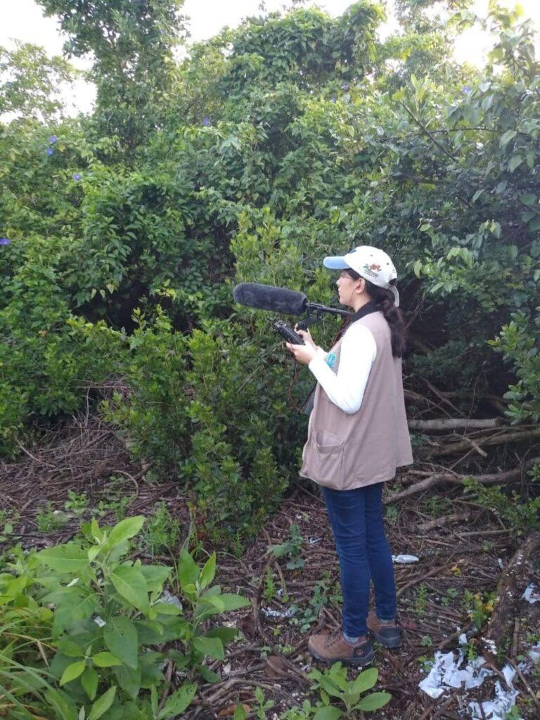 Cozumel usa tecnología para que la comunidad conozca las aves de la isla