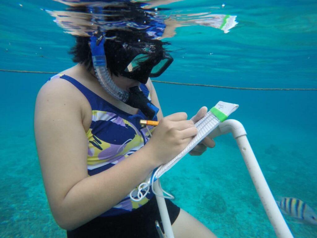 Cozumel instala dispositivos de medición continua en el arrecife de Chankanaab