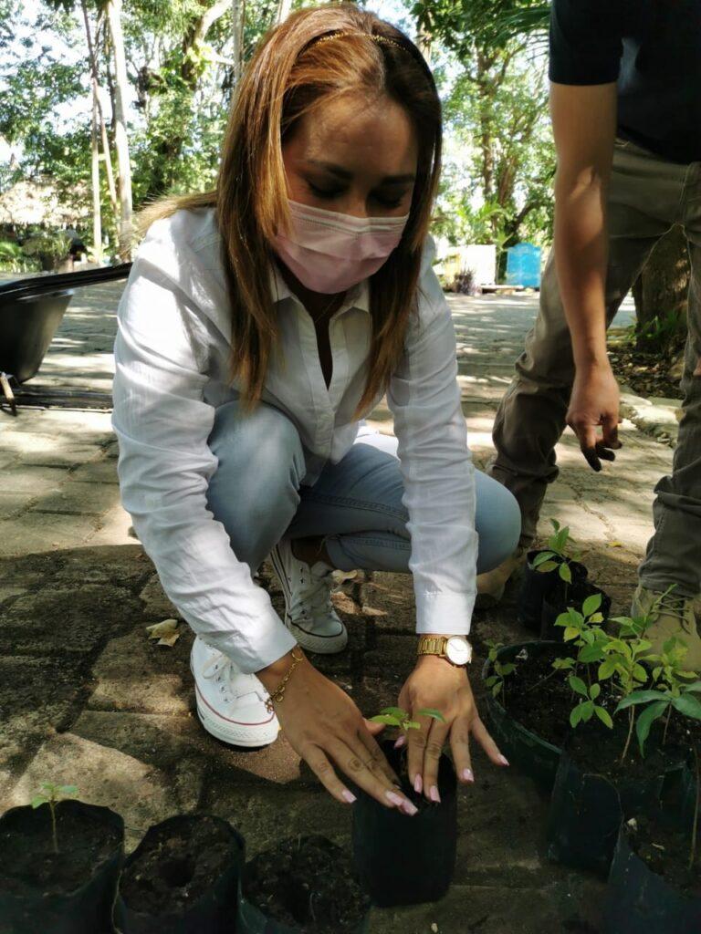 Quintana Roo inicia la campaña Sembrando Conciencias 2021