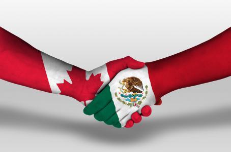 Programa de Trabajadores Agrícolas Temporales (PTAT) México – Canadá se posiciona como modelo de cooperación laboral exitoso