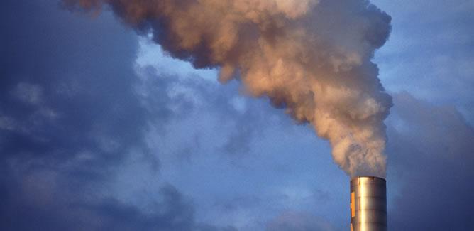 Cada quilate elimina 20 toneladas de gases de efecto invernadero del cielo