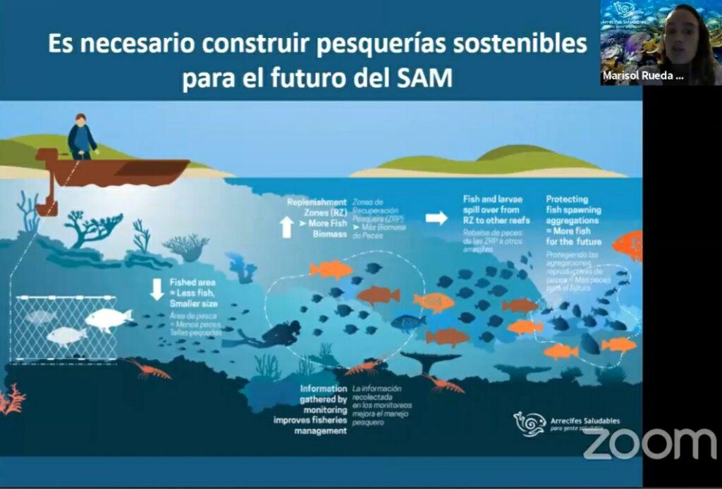 Educación ambiental para proteger el Arrecife Mesoamericano