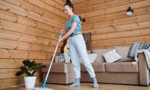 Trabajo domestico